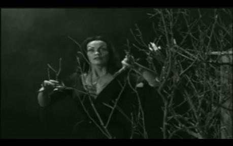 Vampira as the lady vampire